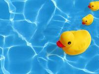 Opširnije:Sanacija bazena